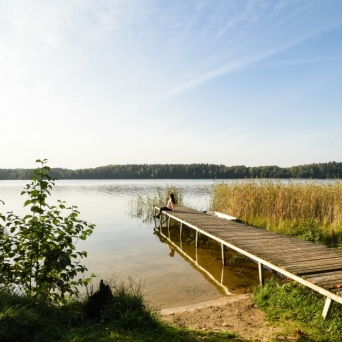 FJ1392 | Kirjeldus: Karula Rahvuspark (Ähijärv) | Autor: Kaisa Äärmaa