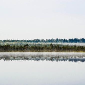 Foto: Kaisa Äärmaa