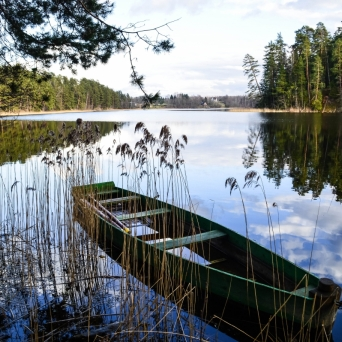 FJ1394 | Kirjeldus: Verijärve matkarada| Autor: Kaisa Äärmaa