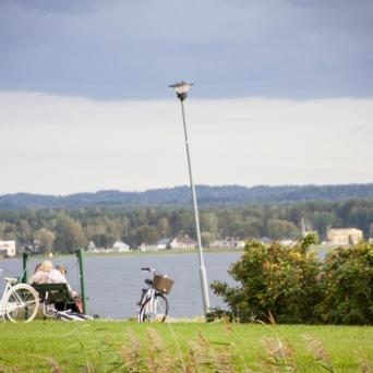 FJ1716 | Kirjeldus: Sume pärastlõuna Tamula ääres | Autor: Tiina Männe