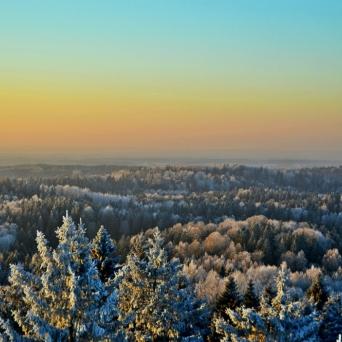 FJ1370 | Kirjeldus: Karge talv Võrumaal | Autor: Kaisa Äärmaa