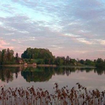 FJ1343 | Kirjeldus: Vaade Viitina järvele | Autor: Ere Uibu Uibu
