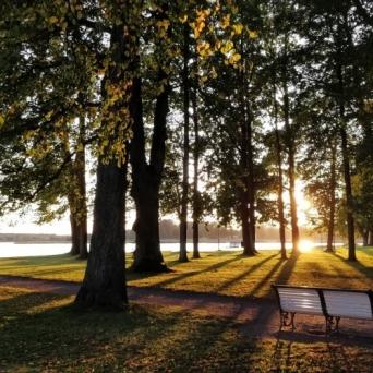 FJ1344 | Kirjeldus: Õhtuvalguses Kreutzwaldi park | Autor: Ere Uibu Uibu